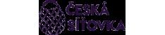 Česká síťovka